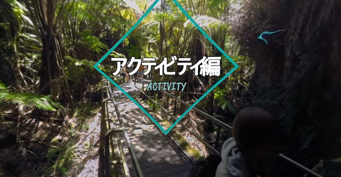 , VR ハワイ島 アクティビティ編